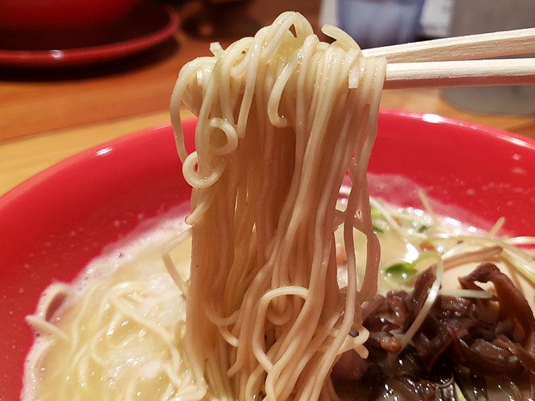 濃厚鶏白湯拉麺 乙 K's柳川店 濃厚鶏白湯拉麺 細麺