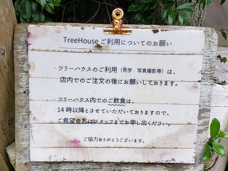 アカツキ カフェ ツリーハウス
