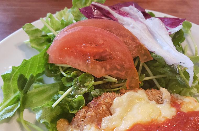 エルグレコ チーズのせミルフィーユカツレツ サラダ
